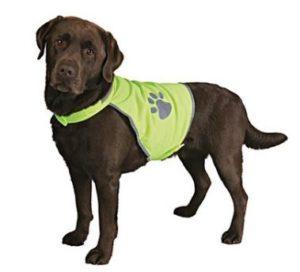 Honden fluo vest